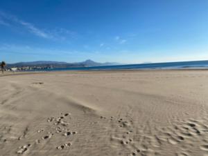 Продажа квартиры в провинции Costa Blanca North, Испания: 2 спальни, 60 м2, № RV6789QI – фото 12