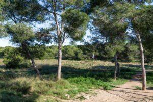 Продажа виллы в провинции Costa Blanca South, Испания: 3 спальни, 67 м2, № RV0535CM – фото 26