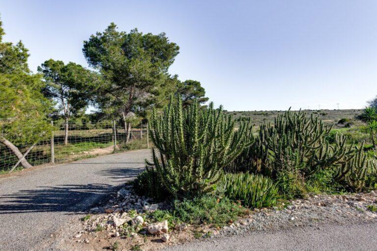 RV0535CM : Вилла в Эль Чапарраль, Торревьеха