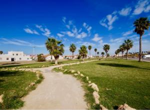 Продажа бунгало в провинции Costa Blanca South, Испания: 2 спальни, 55 м2, № RV0225SG – фото 27