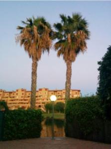 Продажа дуплекса в провинции Costa Blanca North, Испания: 3 спальни, 120 м2, № RV0004QI – фото 34