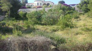 Продажа виллы в провинции Costa Blanca North, Испания: 4 спальни, 610 м2, № NC3535VB – фото 12