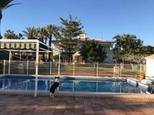 Продажа виллы в провинции Costa Blanca South, Испания: 6 спален, 545 м2, № RV0123VG – фото 2