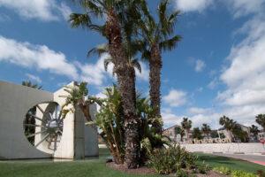 Продажа бунгало в провинции Costa Blanca South, Испания: 2 спальни, 77 м2, № RV2632CO – фото 4