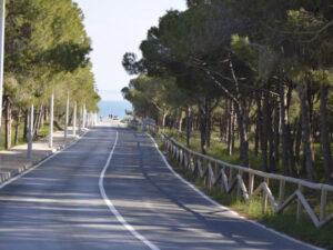 Продажа квартиры в провинции Costa Blanca South, Испания: 2 спальни, № RV6253VC – фото 20