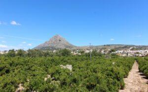 Продажа виллы в провинции Costa Blanca North, Испания: 2 спальни, 85 м2, № RV8016IJ – фото 16