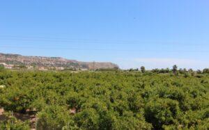 Продажа виллы в провинции Costa Blanca North, Испания: 2 спальни, 85 м2, № RV8016IJ – фото 17